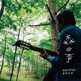 加藤崇之『森の声』