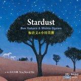 板倉文&小川美潮『Stardust』(7inchアナログ盤)c/w 小川美潮『You Need Me』