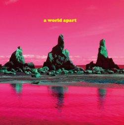 画像1: BIRGIT×MAKIGAMI KOICHI (ビアギッテ×巻上公一)『a world apart』